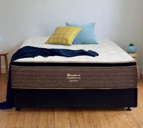 Sleepyhead-Chiropractic-HD-Egmont-Queen-Bed on sale