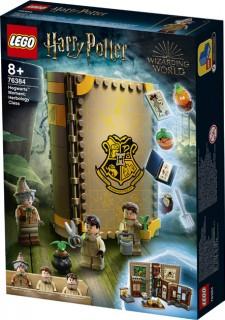 LEGO-Harry-Potter-Hogwarts-Moment-Herbology-Class-76384 on sale