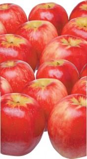 Loose-Yummy-SweeTango-Apples on sale