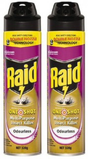 Raid-One-Shot-Insect-Killer-320g on sale