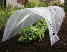 Polythene-Grow-Tunnel on sale
